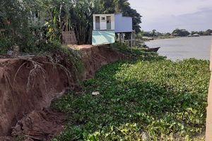 Cảnh báo nguy cơ sạt lở nghiêm trọng ở bờ sông Châu Đốc