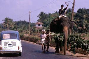 Những khoảnh khắc lạ thường về cuộc sống ở Ấn Độ năm 1969