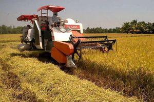 Nam Định: Mâu thuẫn trong lúc gặt lúa, một người tử vong