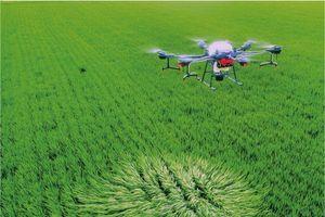 Công nghệ - Giải pháp chủ chốt giải quyết thách thức lương thực toàn cầu
