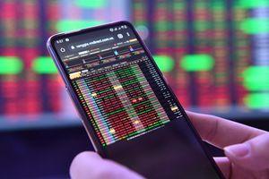 Rớt gần 40 điểm, thị trường chứng khoán đi về đâu?