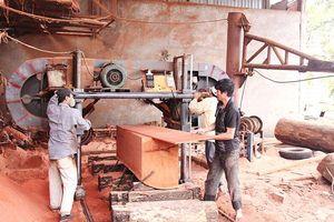 Thúc đẩy phát triển ngành nghề nông thôn