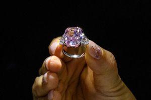 Khám phá viên kim cương màu hồng tím đắt nhất trong lịch sử