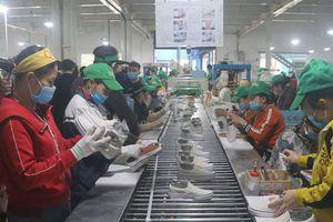 Thanh Hóa nỗ lực giải quyết việc làm cho hàng chục nghìn người lao động