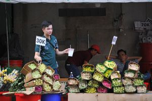 TP.HCM đồng ý mở cửa chợ hoa Đầm Sen trong 3 ngày