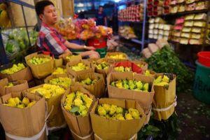 TP Hồ Chí Minh: Đồng ý mở cửa chợ hoa Đầm Sen trong 3 ngày để 'cứu' hoa Đà Lạt