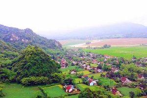 Nghệ An: Lập quy hoạch vùng cho 8 huyện