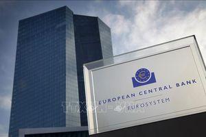 Diễn biến mới liên quan phán quyết của Đức về mua trái phiếu khu vực công
