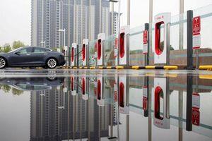 Mất lòng khách hàng Trung Quốc, doanh số Tesla sụt giảm một nửa