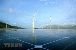 GEC chi 300 tỷ đồng mua cổ phần phát hành thêm của Điện gió Tiền Giang