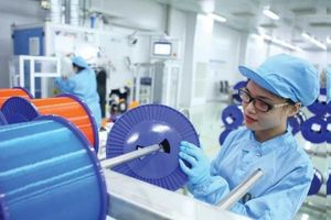 Đầu tư đào tạo nguồn nhân lực để nâng cao năng suất chất lượng