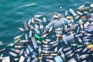 Ráo riết hành động ngăn rác thải nhựa trên biển