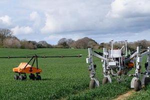 Robot liên hợp diệt cỏ dại bằng điện và gieo hạt