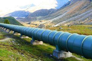 Nga tạm ngừng vận chuyển dầu sang Ba Lan qua đường ống ở Belarus, lý do là gì?
