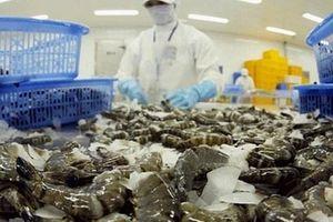 Cổ phiếu nhóm Thủy sản 'ngược sóng' nhờ thông tin tích cực từ tình hình xuất khẩu