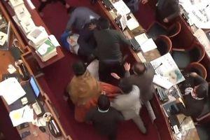 Các nghị sĩ Blovia ẩu đả giữa phiên họp quốc hội