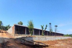 Vụ 15 căn nhà liền kề xây trên đất nông nghiệp: Xử phạt 43 triệu đồng