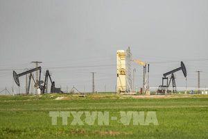 Giá dầu thế giới ổn định trong phiên 9/6
