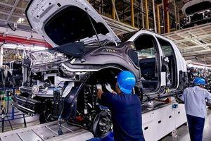 Ford Ranger lắp ráp tại Việt Nam sẽ có ít nhất 5 phiên bản