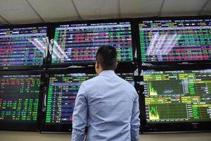 Cổ phiếu nhóm phân bón và thủy sản rực sáng giữa thị trường đỏ lửa