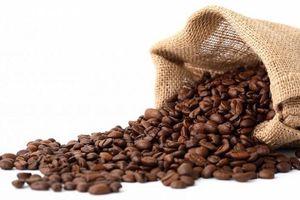 Các yếu tố kỹ thuật đang gây sức ép lên giá cà phê robusia