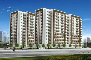 Bình Định chấp thuận chủ trương đầu tư Dự án Nhà ở xã hội Long Vân