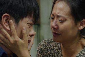 Vì sao Ngọc (Thái Hòa) của 'Cây táo nở hoa' là nam chính gây thất vọng nhất màn ảnh Việt?