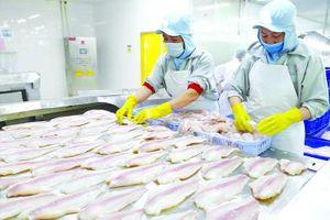 Một cảng tại TQ tạm ngừng nhập hàng đông lạnh, DN Việt cần làm gì?