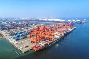 Trung Quốc ngừng nhập khẩu thực phẩm đông lạnh từ Việt Nam và 10 quốc gia tại cảng Trạm Giang