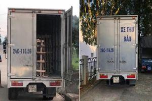 Xe thư báo, xe bán tải ngụy trang chở lâm sản trái phép