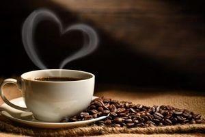 Giá cà phê hôm nay 11/6: Màu xanh đã trở lại, thận trọng với lực mua