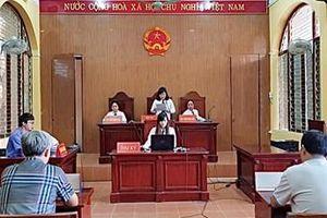 Viện cấp cao 1: 'Dòng họ' không thể là đương sự trong vụ án dân sự
