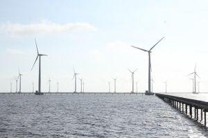 Liên tiếp xảy ra các vụ mất trộm tại công trình điện gió ở Bạc Liêu