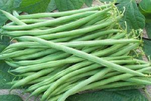 5 thực phẩm 'quen mặt' dễ gây ngộ độc nếu không được nấu chín
