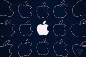 Apple thuê cựu giám đốc điều hành của BMW cho dự án Apple Car của mình