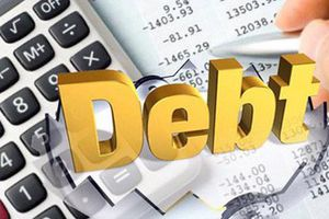 5 tháng đầu năm, Chính phủ trả nợ 161.686 tỷ đồng