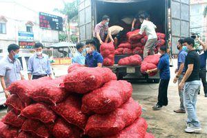 Hỗ trợ tiêu thụ trên 22 tấn hành tím cho nông dân Sóc Trăng