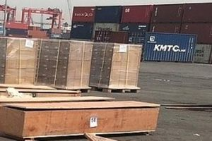 Tăng cường kiểm tra trị giá hải quan mặt hàng gỗ xuất khẩu
