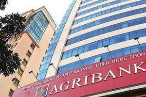 Agribank chi tới gần 2000 tỷ đồng cho các hội nghị, lễ tân...