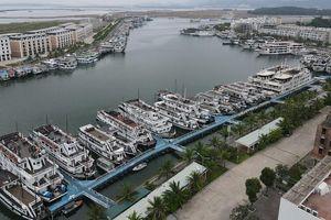 Hơn 500 tàu du lịch Hạ Long nằm 'chờ chết', chủ tàu gửi đơn cầu cứu Thủ tướng