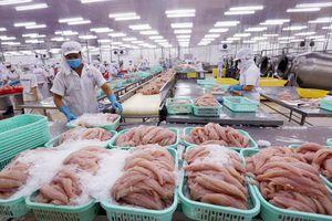 Cảng Trạm Giang (Trung Quốc) tạm dừng nhập khẩu thực phẩm đông lạnh