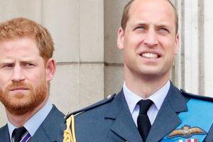 Dấu hiệu đầu tiên cho thấy Harry đang mất dần tước hiệu Hoàng gia