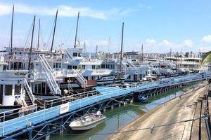 Quảng Ninh: Hoạt động trở lại nhưng các điểm du lịch nổi tiếng vẫn vắng khách