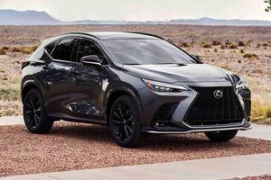 Lexus NX 2022: Mềm mại và hiện đại hơn, thêm động cơ điện