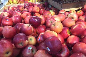 Tại sao ăn trái cây lại giúp giảm cân?