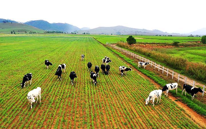Đầu tư của Việt Nam ra nước ngoài tăng mạnh