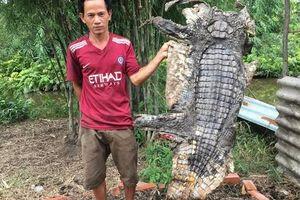 'Có khả năng một số người đã thả cá sấu ra ngoài tự nhiên'