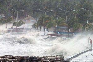 Bão áp sát bờ biển Hải Phòng - Nghệ An, đổ bộ rạng sáng mai