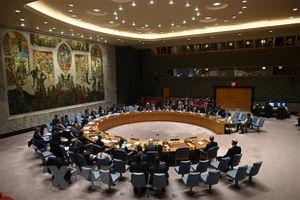 Albania, Brazil, Gabon, Ghana và UAE được bầu vào HĐBA Liên hợp quốc
