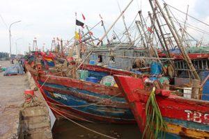 Bão số 2: Thanh Hóa cấm biển, Hải Phòng ngừng giao thông đường thủy